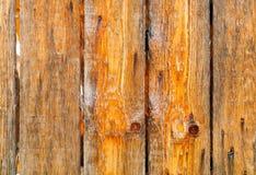 Pomarańczowy tło naturalny drewno, pojęcie naturalne tekstury, kopii przestrzeń Fotografia Stock