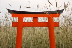 Pomarańczowy Torii japończyka stojak na Łąkowych gras Obraz Stock
