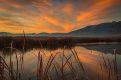 Pomarańczowy wschód słońca nad górą i bagnami Obrazy Royalty Free