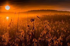Pomarańczowy wschód słońca nad polem adra Zdjęcie Royalty Free