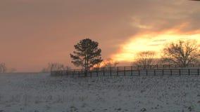 Pomarańczowy zmierzch nad śnieżnym polem zbiory wideo