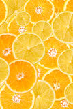 Pomarańcze I cytryny plasterka abstrakt Fotografia Royalty Free
