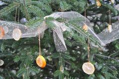Pomarańcze i cytryny sosny choinka Obrazy Stock