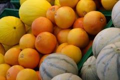 Pomarańcze i melony Fotografia Royalty Free