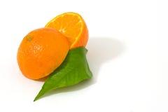 pomarańcze owocowych Fotografia Royalty Free
