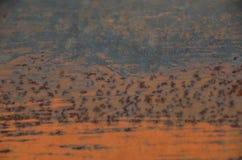Pomarańcze rdza z narysami Obrazy Stock