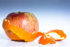 pomarańczowa niespodzianka Obrazy Royalty Free