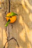 Pomarańczowa owoc na drewno stole Zdjęcie Royalty Free