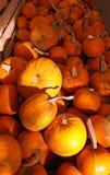 Pomarańczowe Halloweenowe Banie Zdjęcia Royalty Free