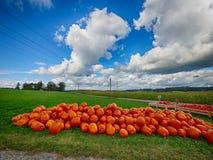 Pomarańczowe Helloween banie outdoors Obraz Stock