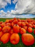 Pomarańczowe Helloween banie outdoors Zdjęcie Stock