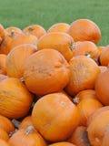 Pomarańczowe Helloween banie outdoors Zdjęcie Royalty Free