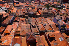 Pomarańczowi dachówkowi dachy domy Fotografia Royalty Free