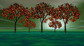 pomarańczowi drzewa Obrazy Stock