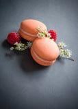 Pomarańczowi macaroons Fotografia Royalty Free