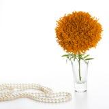 Pomarańczowi nagietki Fotografia Stock