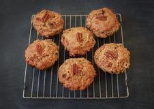 Pomarańczowi Pecan Muffins Obrazy Stock