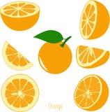 Pomarańczowi plasterki, kolekcja ilustracje Fotografia Royalty Free