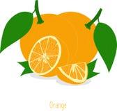Pomarańczowi plasterki, kolekcja ilustracje Zdjęcie Stock