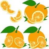 Pomarańczowi plasterki, kolekcja ilustracje Obraz Stock