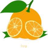 Pomarańczowi plasterki, kolekcja ilustracje Obrazy Royalty Free