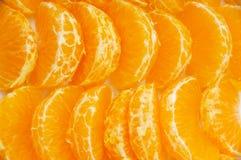 pomarańczowi segmenty Obraz Royalty Free