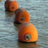 Pomarańczowy boja Obrazy Royalty Free