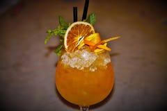 Pomarańczowy cobbler Zdjęcia Royalty Free