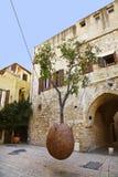 Pomarańczowy drzewo, wiesza na arkanach w powietrzu Obrazy Royalty Free