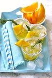 Pomarańczowy fizz Obrazy Stock