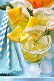 Pomarańczowy fizz Zdjęcie Royalty Free