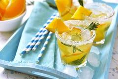 Pomarańczowy fizz Zdjęcia Stock