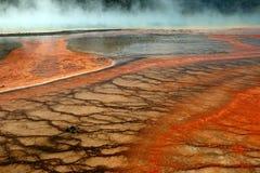 pomarańczowy idzie Yellowstone Obraz Royalty Free