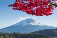 Pomarańczowy klon i Czerwony klon Fujisan przy Kawaguchiko Fotografia Royalty Free