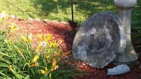 Pomarańczowy Lilly& x27; s i birdbath Fotografia Stock