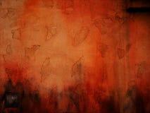pomarańczowy paster Zdjęcie Stock