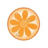 Pomarańczowy plasterek z wodnymi kroplami Obrazy Royalty Free