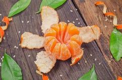 Pomarańczowy promieniowy obrany jak kwiat Fotografia Stock