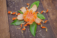 Pomarańczowy promieniowy obrany jak kwiat Zdjęcie Royalty Free