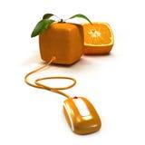 pomarańczowy surfing royalty ilustracja