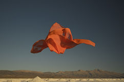pomarańczowy szalik Fotografia Stock