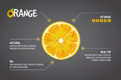 Pomarańczowy infographics Cytrus świeżych owoc wektorowa ilustracja na szarym tle Obraz Royalty Free