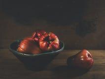 Pomarrosas rojas frescas Imagen de archivo