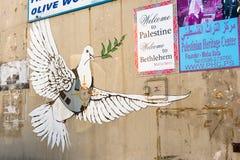 Pomba blindada da paz Imagem de Stock Royalty Free