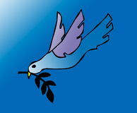 Pomba da paz Foto de Stock Royalty Free