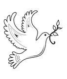 Pomba da paz Imagens de Stock