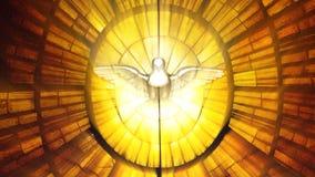 Pomba do Vaticano do vitral (laço) ilustração royalty free