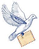 Pomba postal com envelope do correio aéreo ilustração stock