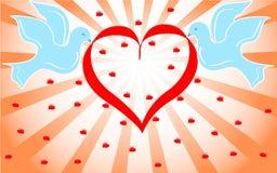 Pombas azuis que prendem o coração vermelho. vetor   Imagens de Stock Royalty Free