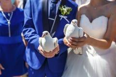 Pombas brancas do casamento nas mãos dos recém-casados imagens de stock royalty free